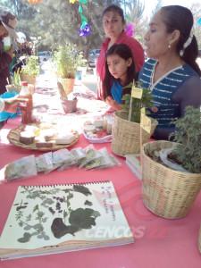 Tequio Pedagógico San Juan Teitipac 24 marzo 2017_13